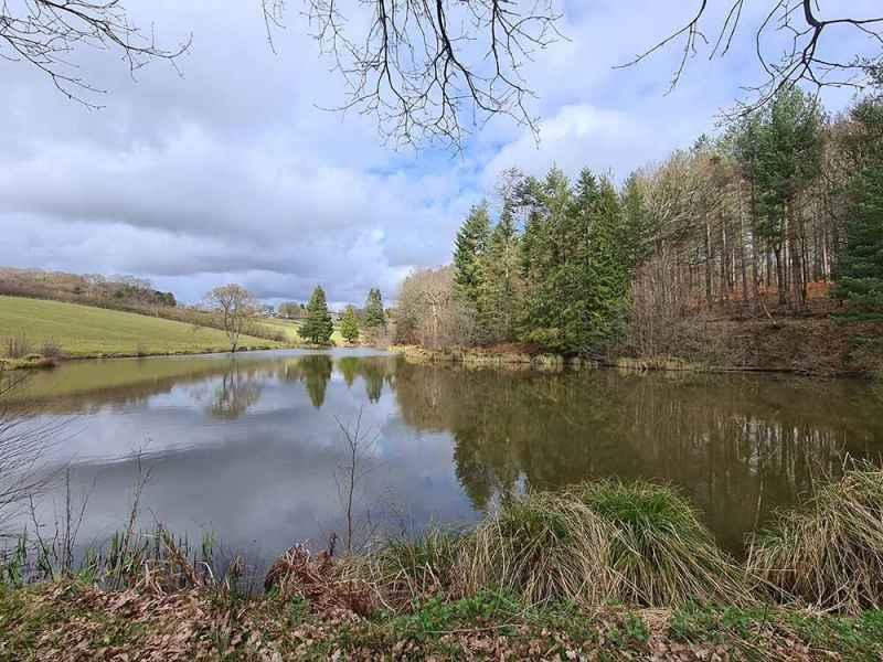 Trout lake 1 at Colin Godmans