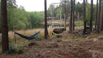 Hammock camping New Forest