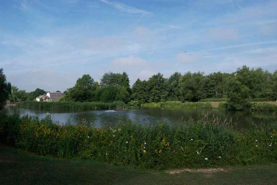 Coltsford Mill - Mill Pond